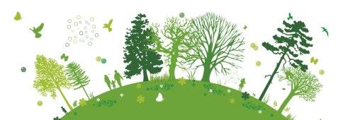 sostenibilità2